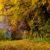 Herbstwalzer